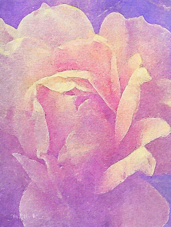 colourful_rose_aristic
