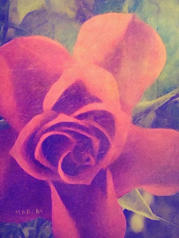 Mini Red Rose artistic filter added.