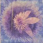 pink_crystal_fountain_clematis_artistic