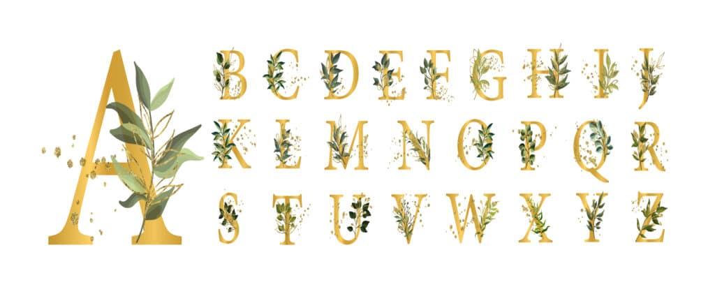 Decorative or Display fonts.