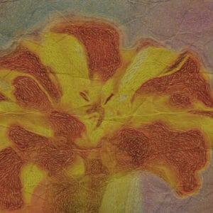 Aztec Marigold Artistic