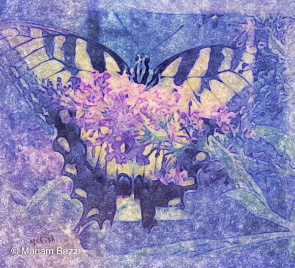 Tiger Butterfly Artistic